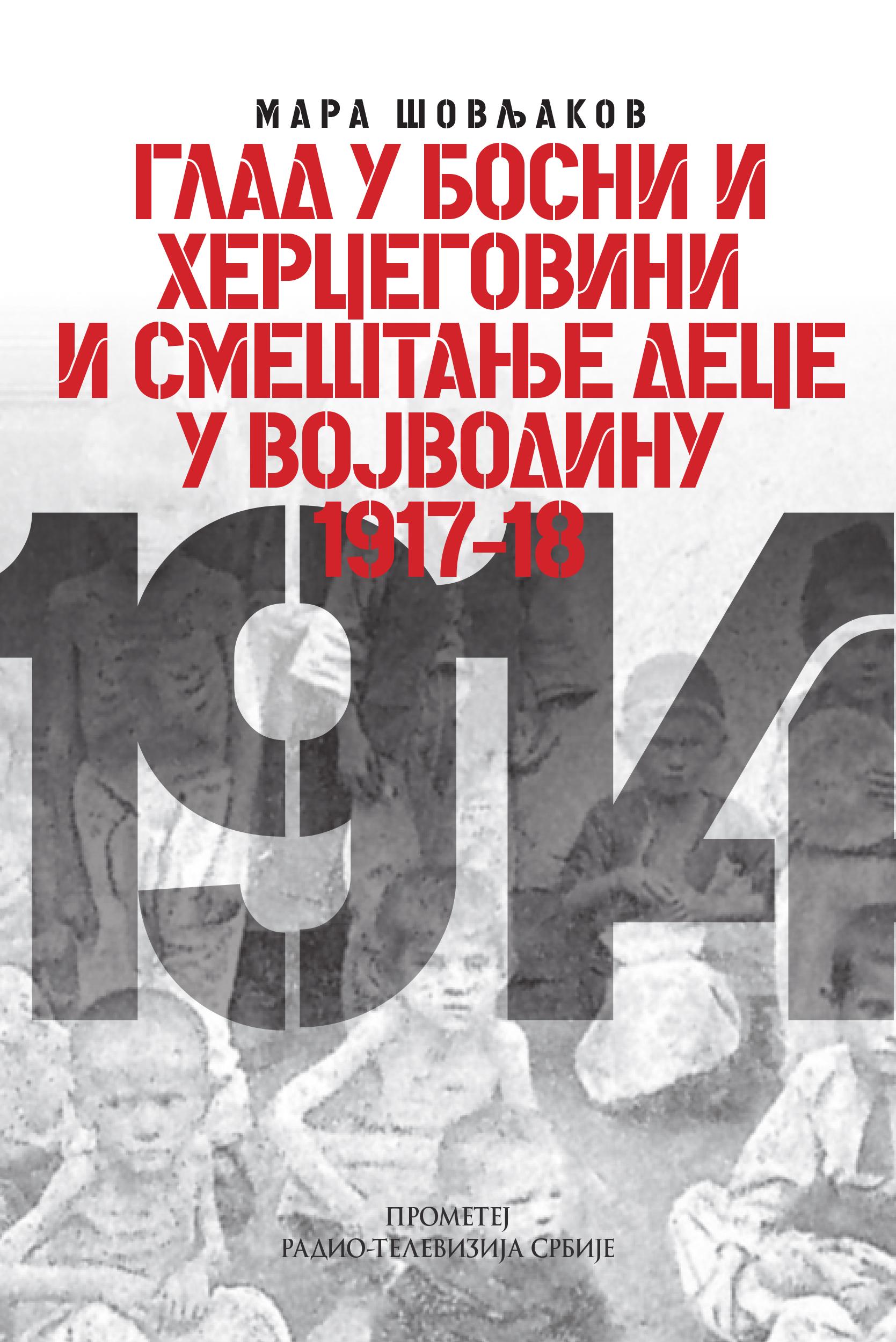 Glad u Bosni i Hercegovini i smeštanje dece u Vojvodinu 1917–18